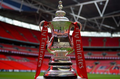emirates-fa-cup-on-stand-on-pitch